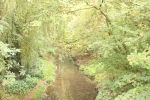 Image of Chaddesden Park brook.