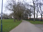 Tree lined path at Normanton Park.
