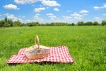 Iamge of a picnic basket on grass.